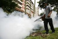 Singapore dengue crisis