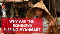 Who are the Rohingya and why are so many fleeing Myanmar?