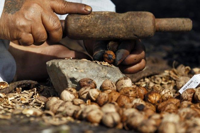 Applications of walnut shell