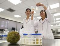 Scientists crack durian genome
