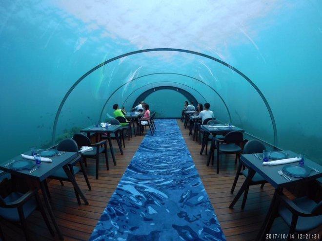 5.8 Under sea resturant