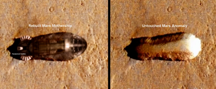 Scientist accuses NASA of covering up alien fossil ...