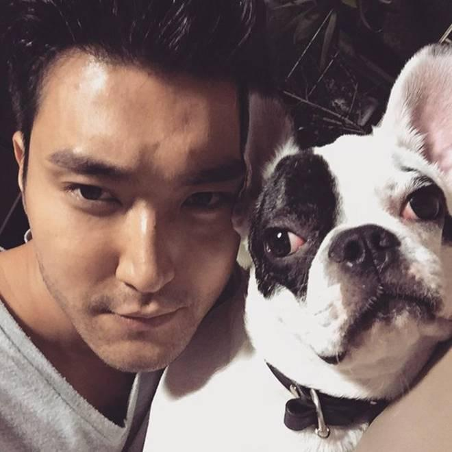 Siwon with his dog Bugsy