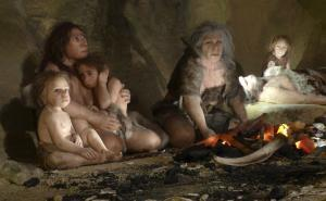 The Neanderthals