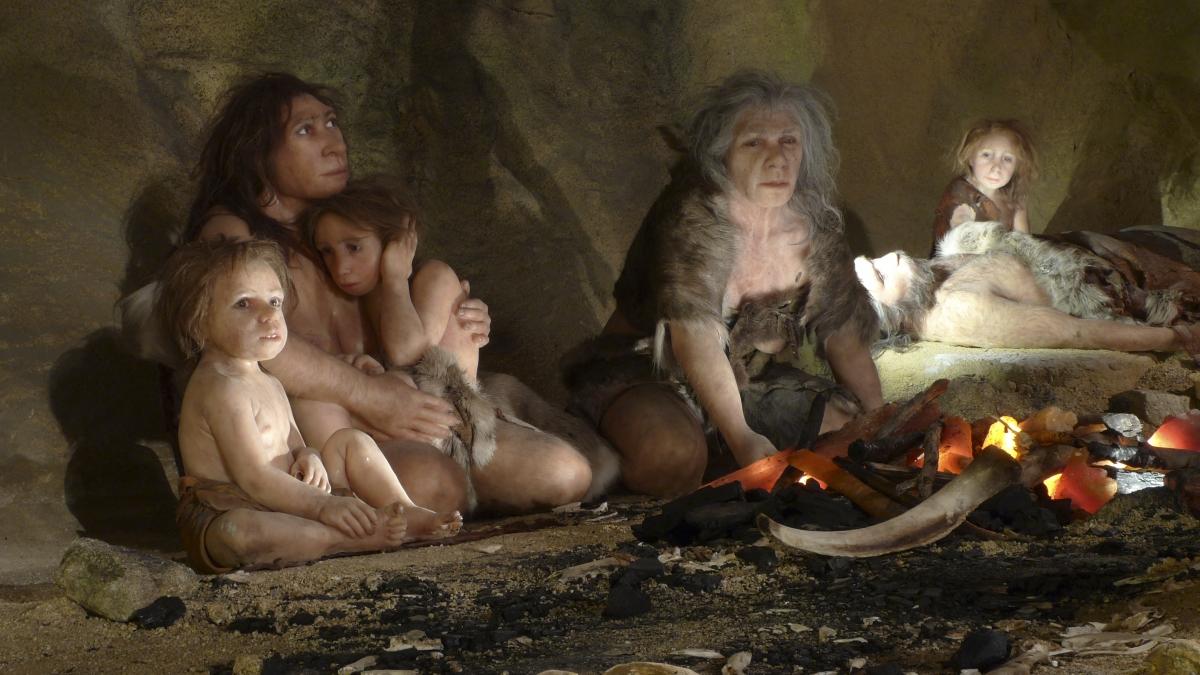 The Neanderthals