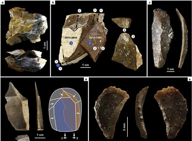 Neanderthal  artifacts