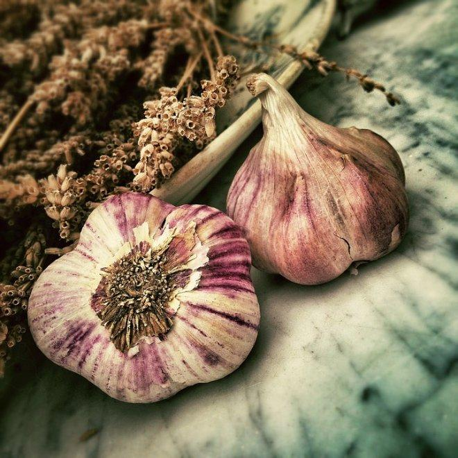 Garlic to combat cystic fibrosis