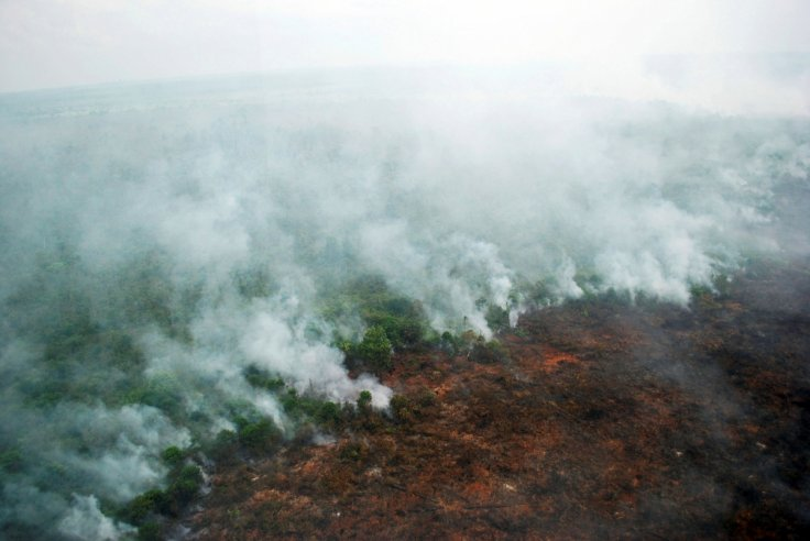 Indonesia's latest comments on Transboundary Haze Pollution Act welcomed by Singapore