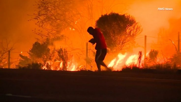 Dramatic moment man rescues rabbit from California wildfires