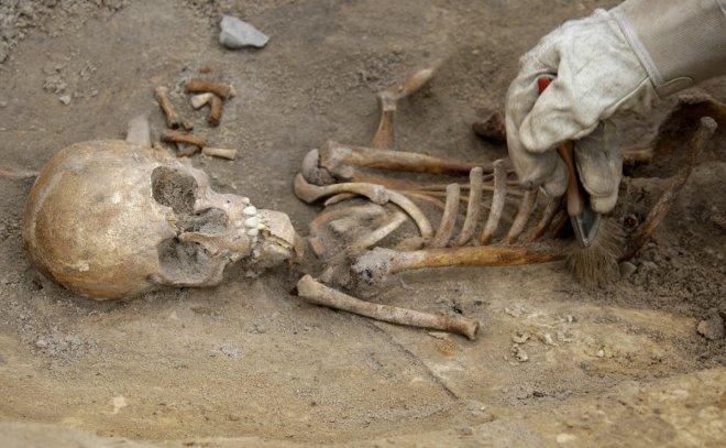 Human skeleton found