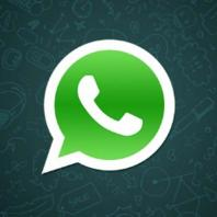 WhatsApp crashed