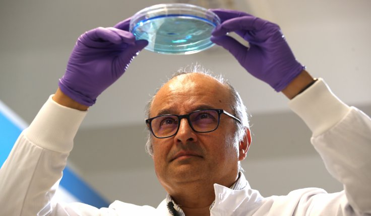 Professor Ketan Patel works in the lab at MRC Laboratory of Molecular Biology in Cambridge