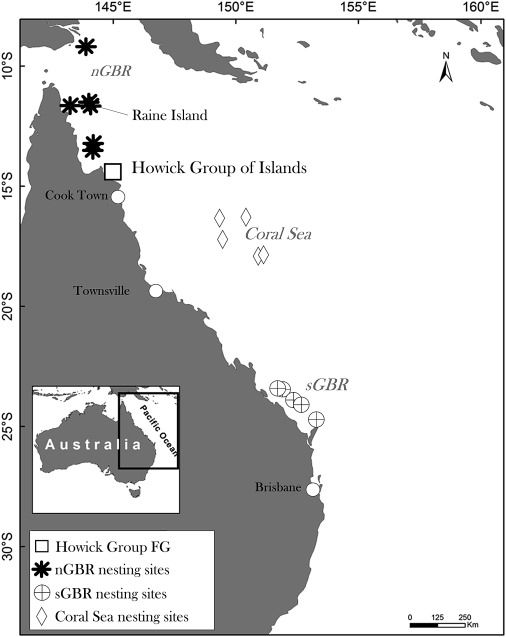 Green Sea Turtle Nesting and Foraging Sites within the Southwest Pacific