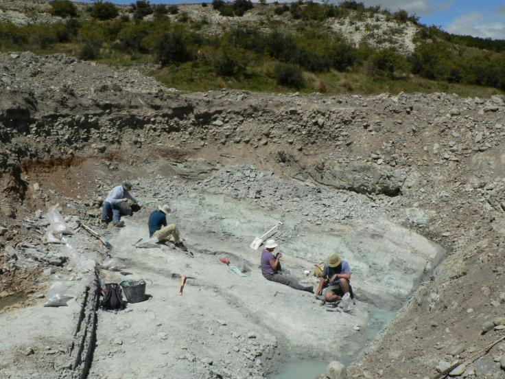 The fossil dig site at St Bathans in New Zealand where the fossilised remains of an extinct giant burrowing bat, Vulcanops jennyworthyae, were found.