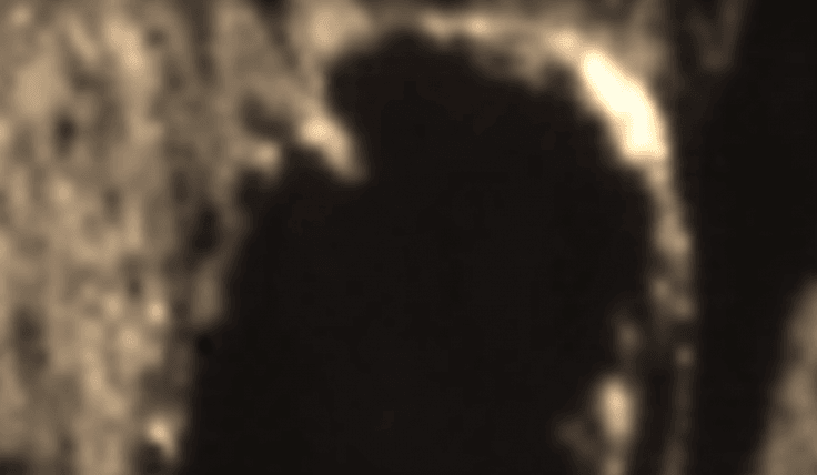 Alien with breathing tube spotted on Moon