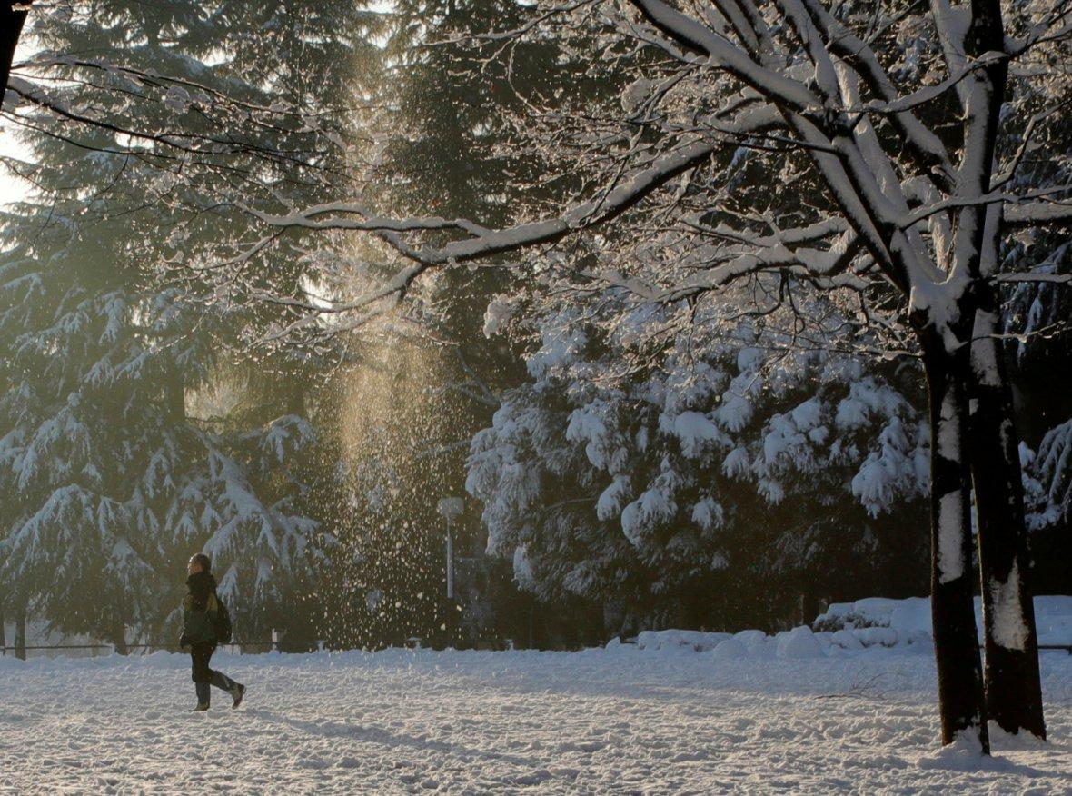 A man makes his way at a park in Tokyo