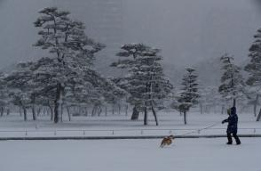 A woman and a dog make their way in the heavy snow at the Imperial Palace in Tokyo, Japan January 22, 2018. REUTERS/Kim Kyung-Hoon