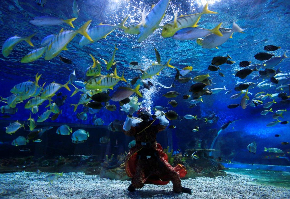 Manila, PhilippinesA professional diver wears an underwater Prosperity God costume