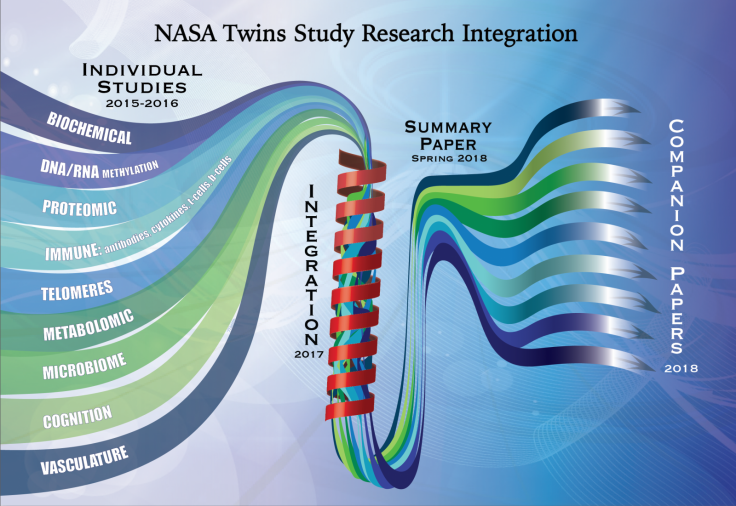 Graphic illustration of the path the individual Twins Study research takes from research to integration to one summary paper to several companion papers.