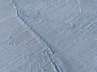 Arctic sea ice cover
