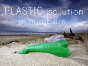 how-plastic-waste-is-killing-the-oceans