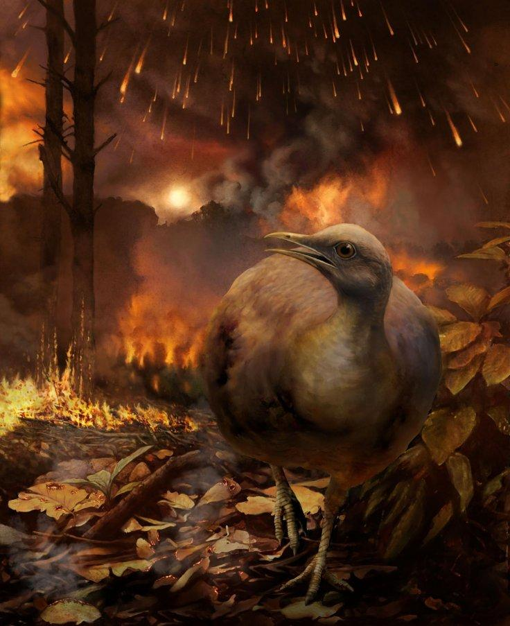 This illustration shows a hypothetical surviving bird lineage -- small-bodied and specialized for a ground-dwelling lifestyle -- fleeing a burning forest in the aftermath of the asteroid strike that eliminated non-avian dinosaurs and destroyed global fore
