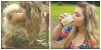 Woman drinks dog's pee