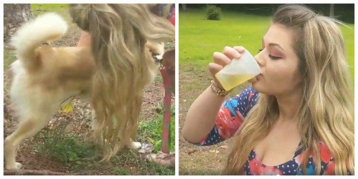 Woman drinks dog's pee