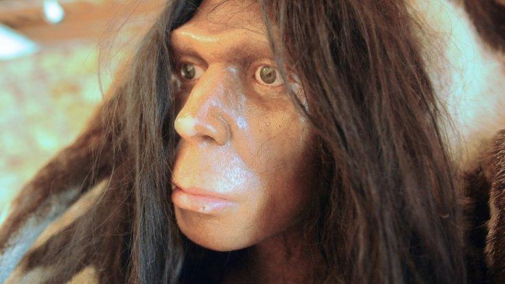 five-surprising-facts-about-human-evolution