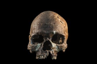 Skull from a Hòabìnhian person from Gua Cha archaeological site, Malaysian Peninsula.