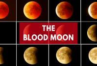 blood-moon-delights-skygazers-to-a-celestial-spectacle