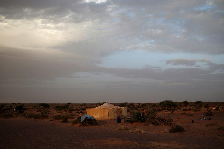 "A tent belonging to an indigenous Sahrawi family stands in Tifariti, Western Sahara, September 8, 2016. REUTERS/Zohra Bensemra SEARCH ""POLISARIO"" FOR THIS STORY. SEARCH ""WIDER IMAGE"" FOR ALL STORIES."