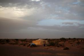 """A tent belonging to an indigenous Sahrawi family stands in Tifariti, Western Sahara, September 8, 2016. REUTERS/Zohra Bensemra SEARCH """"POLISARIO"""" FOR THIS STORY. SEARCH """"WIDER IMAGE"""" FOR ALL STORIES."""