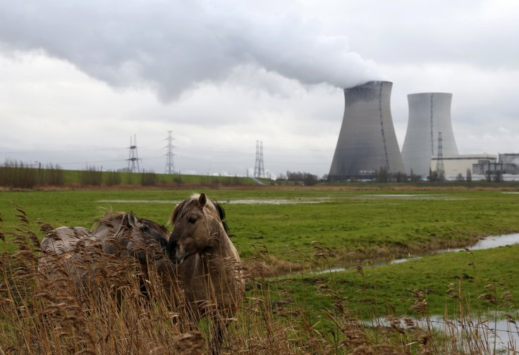 Nuclear plant of Electrabel, in Doel