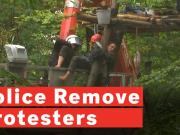 police-forcibly-remove-coal-mine-protesters-from-ancient-forest