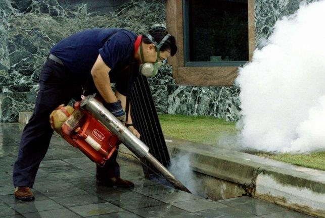 Singapore: Dengue cases rise again after two-week decline