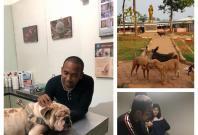 Kristian Adi Wibowo, Animals Hope Shelter