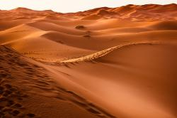 desert flooding