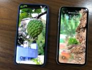 Apple iPhone XS Max (left) placed beside the iPhone XR (right).
