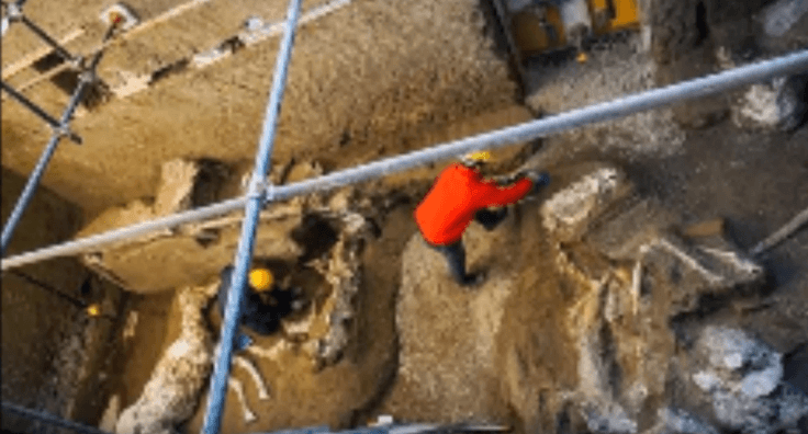 Pompeii excavation
