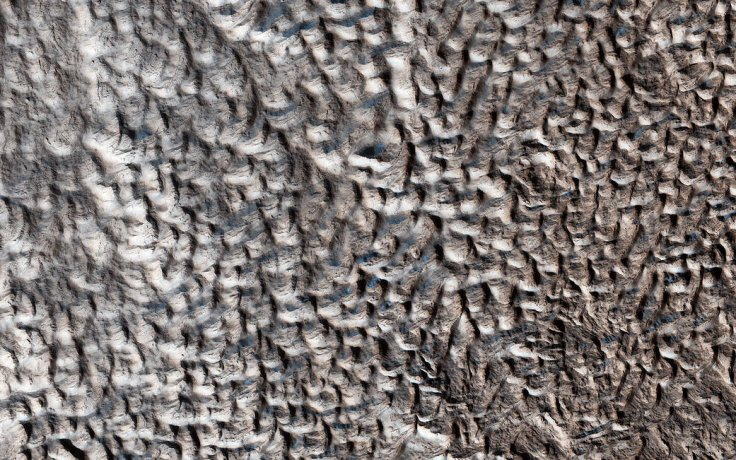 "This surface texture of interconnected ridges and troughs, referred to as ""brain terrain"" is found throughout the mid-latitude regions of Mars."