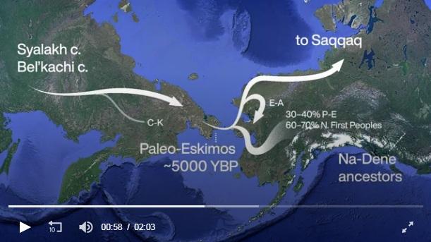 video on Paleo Eskimos