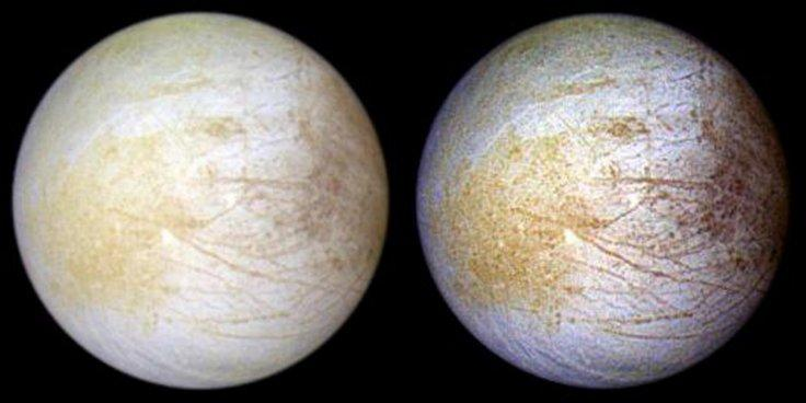 salt found on Europa