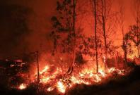 Sumatra forest fire