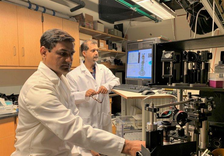 Dr. Vijay Raj Singh, SMART Research Scientist and Dr. Zahid Yaqoob, MIT LBRC Principal Investigator