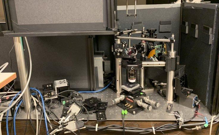 Lab set up of the confocal reflectance interferometric microscope