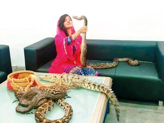 Suicide Bombing Or Deadly Snakes Pakistani Singer Rabi -6756