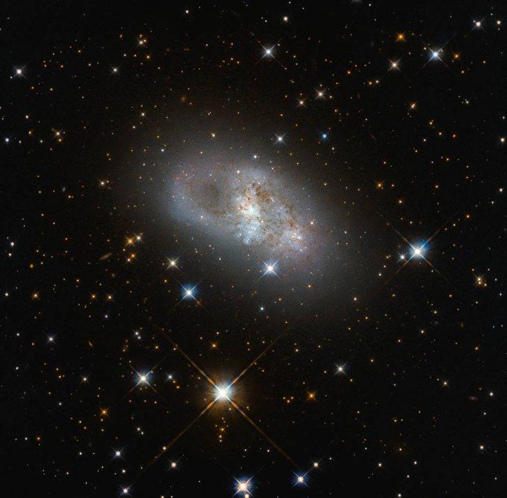 IC 4653