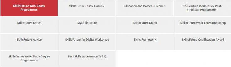 SkillsFuture Programs