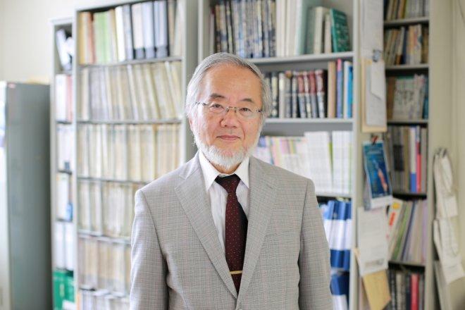 Yoshinori Ohsumi: Japanese scientist wins Nobel Prize in medicine